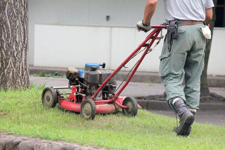 草刈り/芝刈り/草むしり