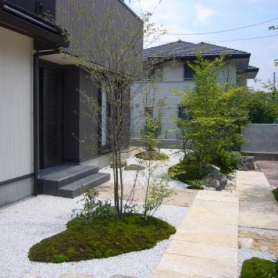 雑木、苔、庭石ですっきりとした和風の前庭