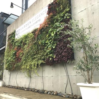 アートキャンバス 壁面緑化パネル W750タイプ 追加型 植栽込み 潅水システム無 1パネル