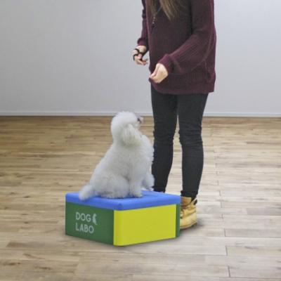 アジリティ トイ・テーブル (屋内・小型犬用)