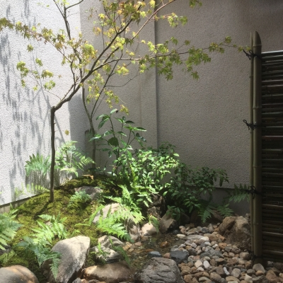 東山区民泊の坪庭