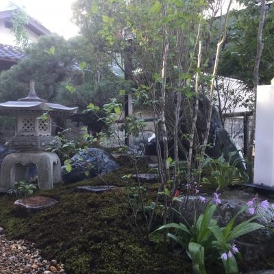 八木町の庭