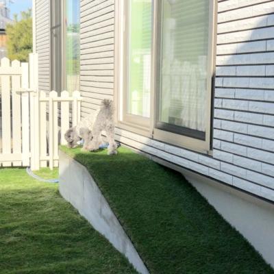 アメリカンフェンスと人工芝のコントラストが美しい犬+庭リノベーション♪