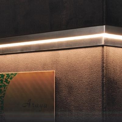 LED Light  Dorrie LEDライト デリエ